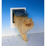 cat electronic door