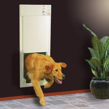 pet door electronic
